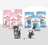 Γνωρίστε τα νέα προϊόντα Royal Canin® αποκλειστικά για κουτάβια & γατάκια!